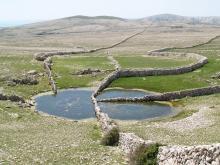 Krška lokva Diviška na otoku Krku